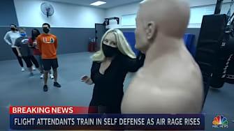Flight attendant self-defense