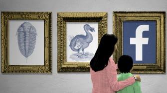 Museum extinction.