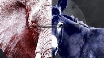 A donkey and an elephant.