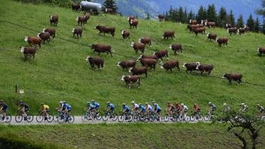 A bike race.