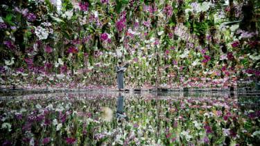 A floating flower garden.
