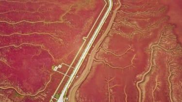A red beach.