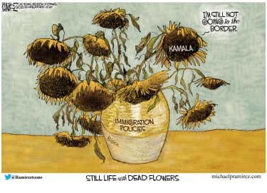 Kamala's dead flowers