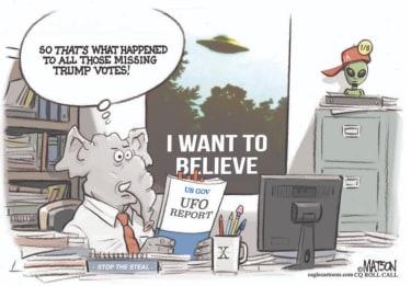trump votes in the sky