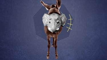 A donkey.