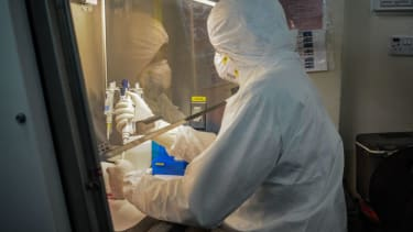 Researcher tests COVID-19 samples