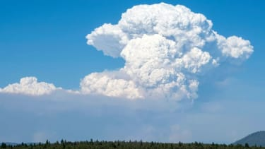 A cloud formed by the Bootleg Fire in southern Oregon.
