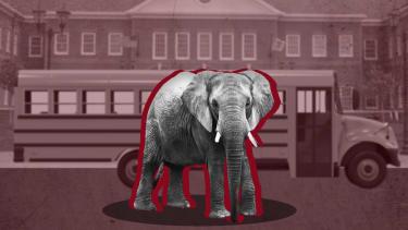 Elephant in front of school.