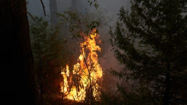 Flames from the Caldor Fire.