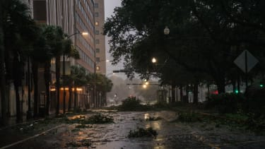Downed trees in New Orleans.