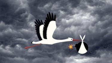 A mean stork.