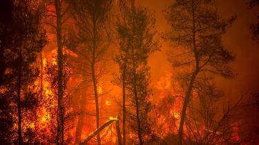 Greece fires