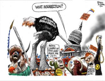 Political Cartoon U.S. arizona recount gop