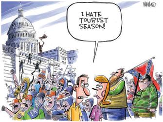 political cartoon capitol riot