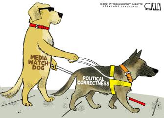 The blind watchdog