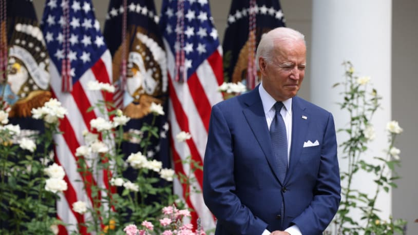 Only 18 percent of voters think Biden best represents the Democratic party
