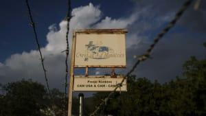Haitian gang leader threatens